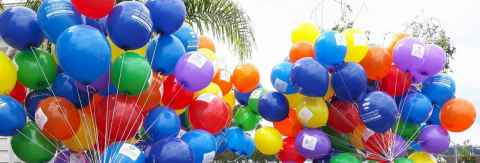 Rainbow balloons with University of Auckland logo from Pride Parade