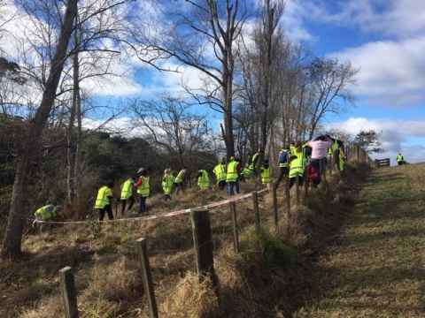 Alumni help Sustainable Business Network and Conservation Volunteers NZ to plant trees at Omaru Stream