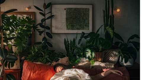 Simon Devitt Prize for Photography exhibition