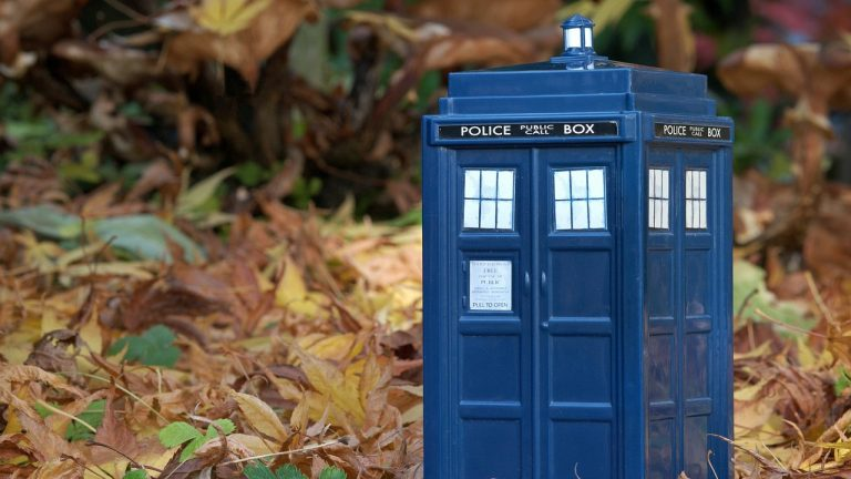 Dyspraxia in the tardis -  Liz Fairgray adds depth to the Dr Who version of the disorder.
