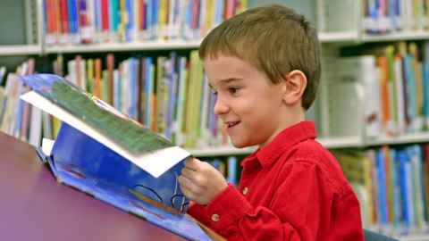 Young boy in library reading a book.