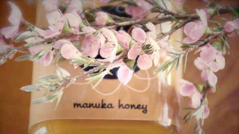 A stem of delicate flowers from a mānuka tree lies acroos a tub of New Zealand mānuka honey which has a long history of use in traditional Māori healing. Photo: iStock