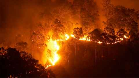 An image shows bush fire forcing it's destructive path across the Australian landscape. Photo: iStock