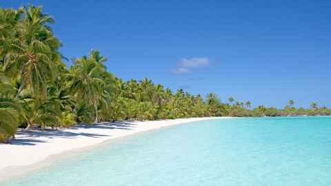 The image shows the crystal clear sea and palm fringed white sandy beach of Aitutaki in the Cook Islands, a popular draw for NZ visitors who bring economic benefits to small island economies that cannot be overstated. Photo: iStock