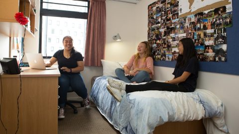 O'Rorke Hall single room