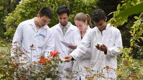 Biological science students doing plant practical