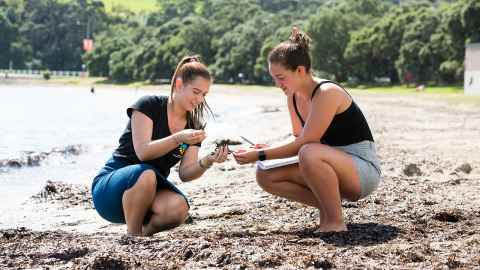 Two female students doing their lab experiment on a beach