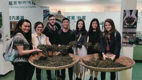 Tea factory visit with CAPE interns